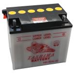 Batterie tondeuse Y60-N24-LA2 12V / 28Ah